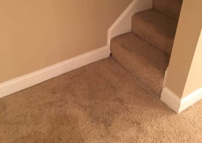 Blacklight-carpet-cleaning-pet-stains-6-min