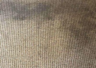 Deep-carpet-cleaning-greenville-sc-1-min