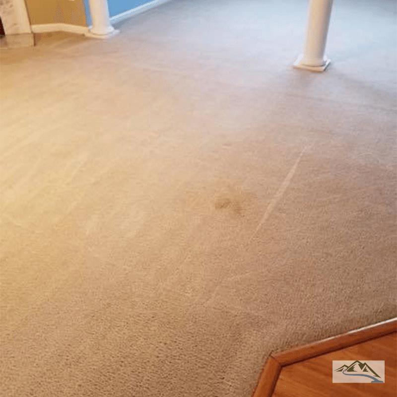 carpet-cleaning-deep-greer-sc-spot2