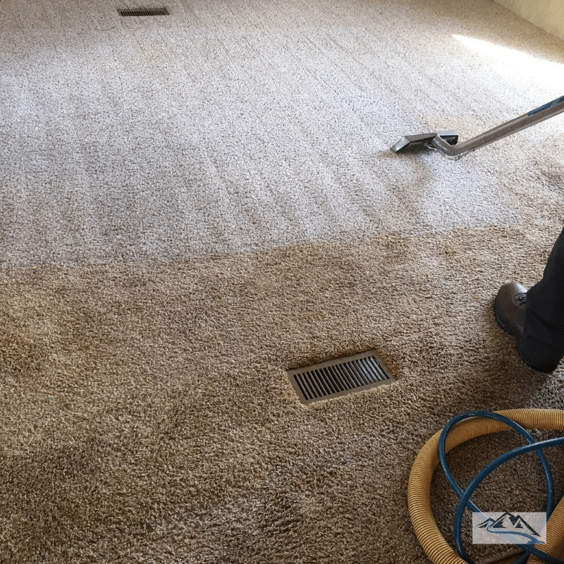 carpet-cleaning-mid-deep-clean-greenville-sc-large-area