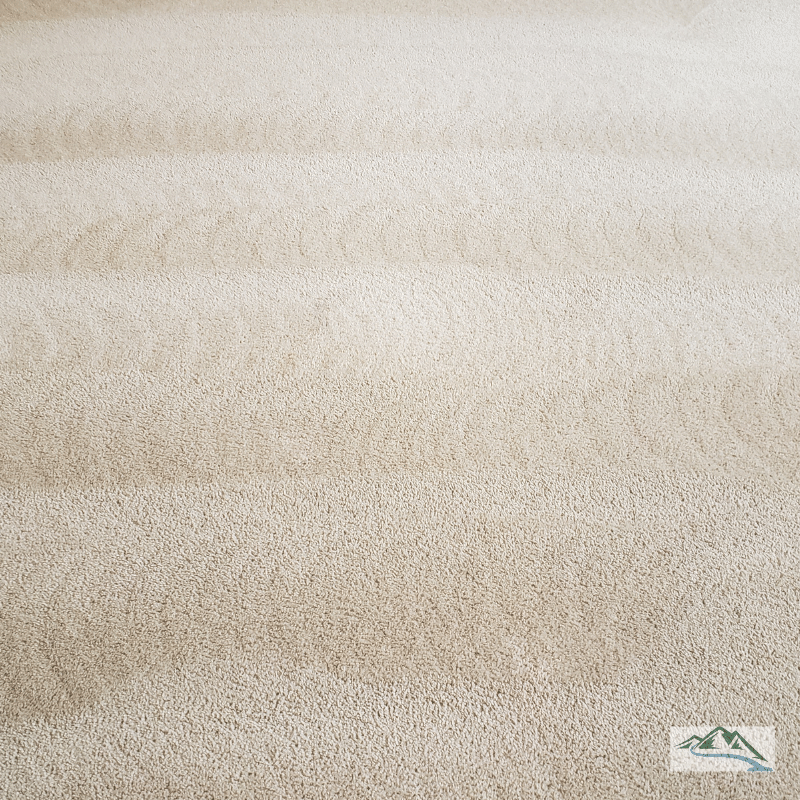 carpet-cleaning-white-greenville-sc-after