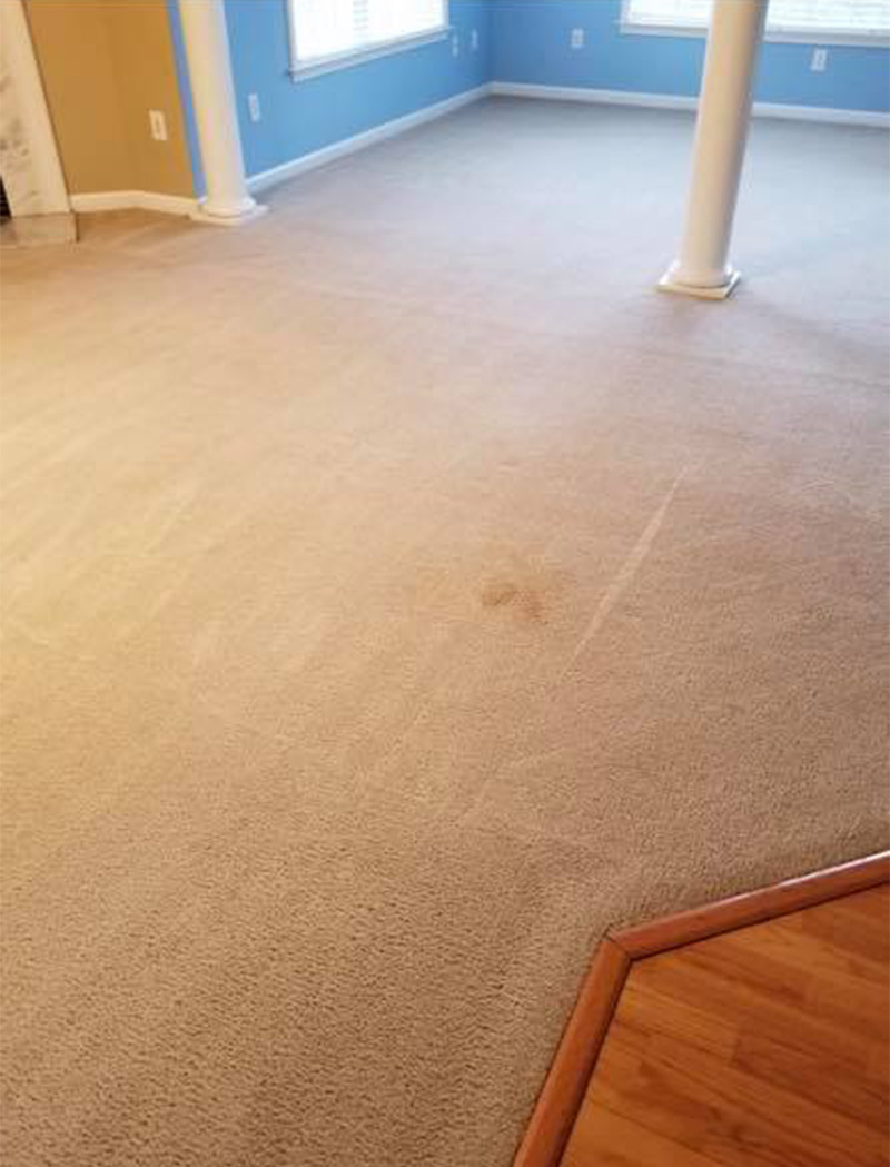 stain-on-carpet-deep-cleaning