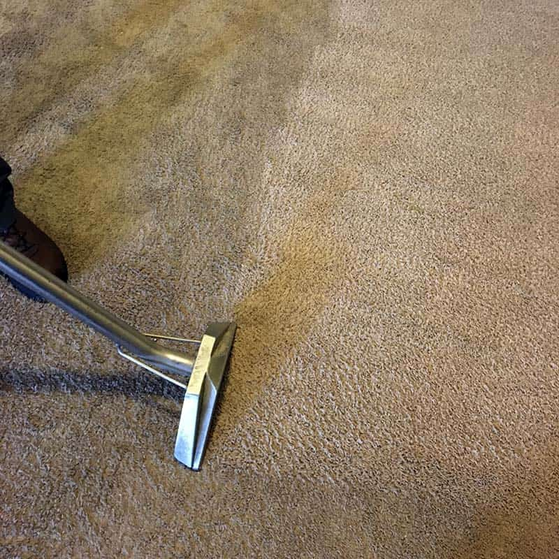 Carpet Cleaning in Greenville, SC